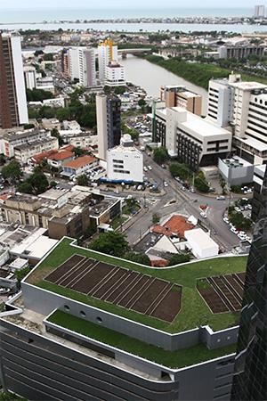 Qualidade do ar melhora com a aplicação de telhados verdes. Na foto, telhado do edifício Charles Darwin