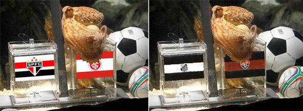 "Polvo Paulo ""aponta"" vencedores da semifinal da Libertadores e da Copa do Brasil. Crédito: montagem na internet"