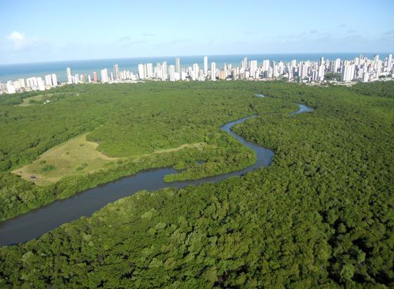 Boa Viagem e Ilha de Deus, unidos pelo Recife. Foto: Cassio Zirpoli/Diario de Pernambuco