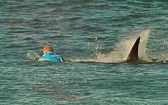 Mick Fanning atacado por um tubarão na África do Sul