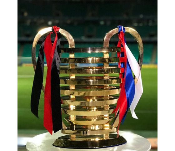 A taça da Copa do Nordeste de 2017 na Fonte Nova. Foto: divulgação