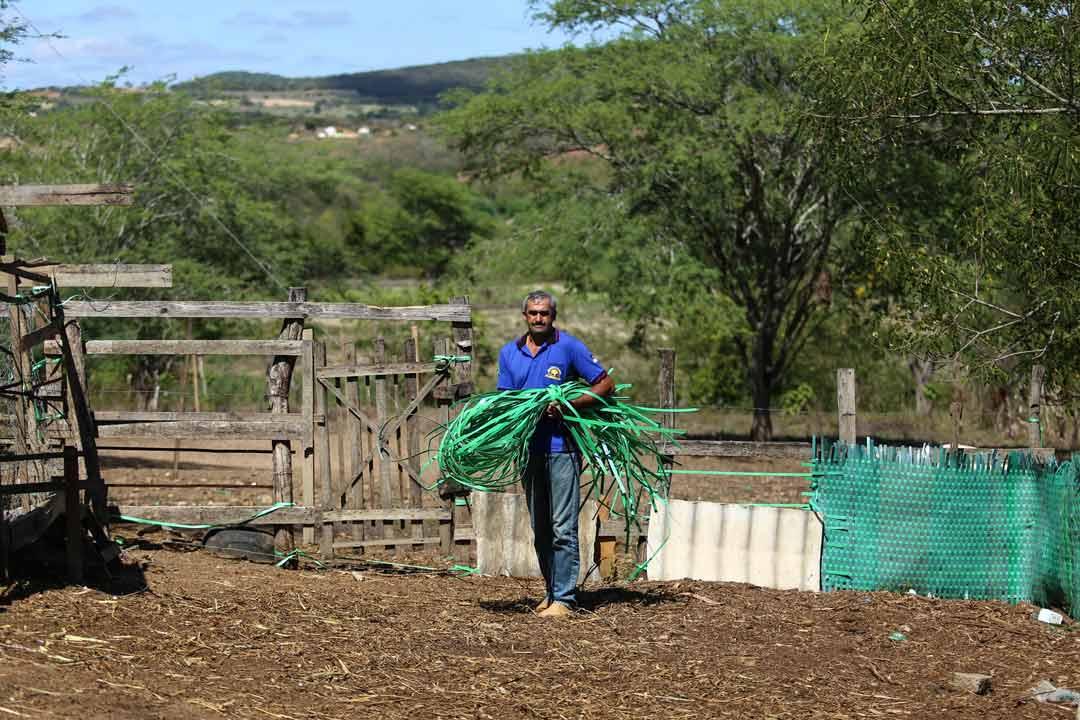 Os lacres mais resistentes são usados para fazer as cestas; os menos resistentes viram matéria-prima para cercas - Foto: Peu Ricardo