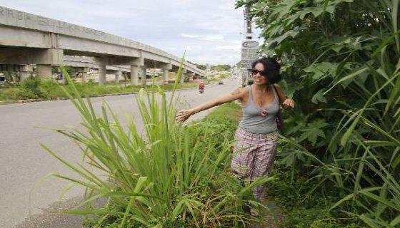 Vegetação invade área vegetação invade área do passeio na PE-15 - Foto - Jo Calazans pedestre