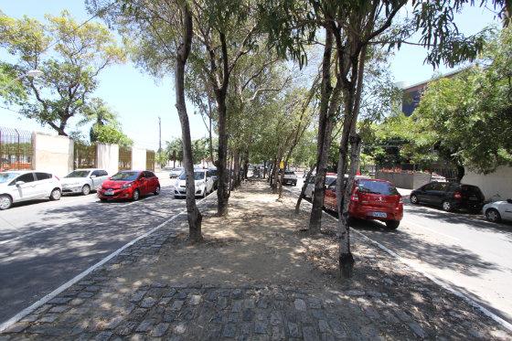 Rua oton Paraís, no bairro dos Torrões. Apesar do espaço e do canteiro arborizado não há ciclofaixa ou espaço de convivência para o pedestre Foto: Nando Chiappeta DP/D.A.Press