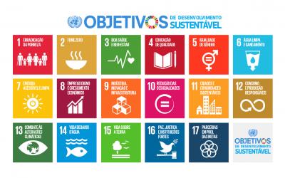 Países precisam de políticas públicas para estudante carente, diz OCDE