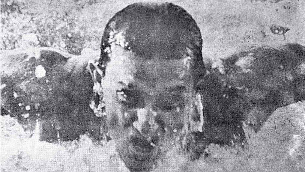 Nadador participou dos Jogos de 1968, no México - Foto: Reprodução