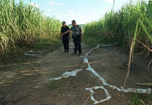 Corpos das duas adolescentes foram encontrados num canavial. Foto: Teresa Maia/DP